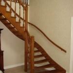 Meranti eenkwart trap